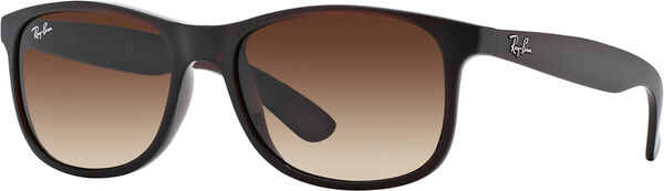 Ray-Ban ANDY 4202 image number null