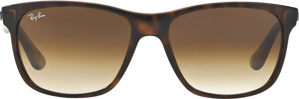 Ray-Ban 4181 image number null